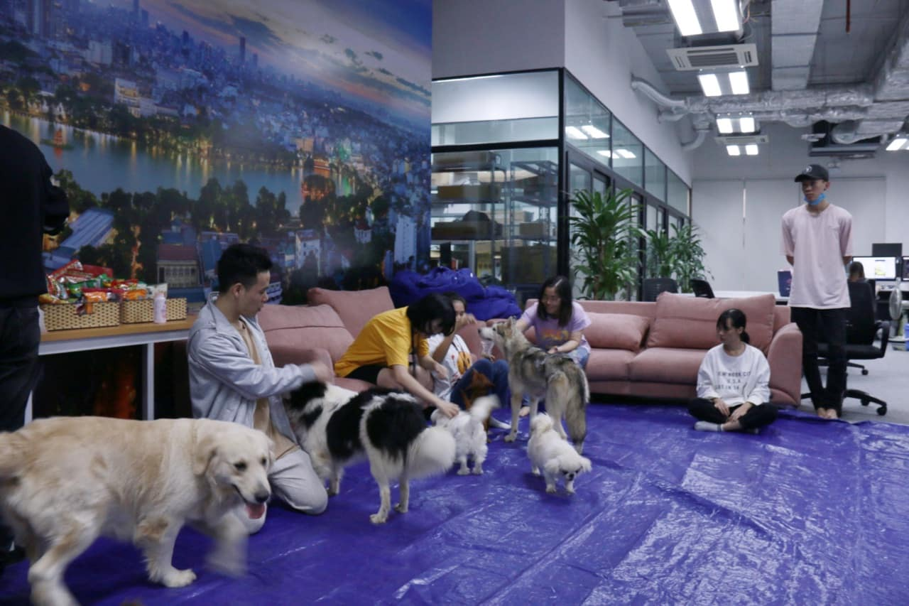 Having pets in the office has been shown to reduce stress and make employees feel more relaxed and comfortable.